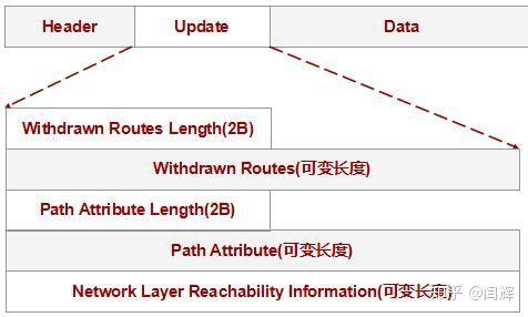 什么是BGP,商家宣传的BGP多线是什么意思?-7